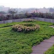 屋顶绿化小径设计