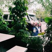 花店绿化环境设计