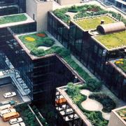 城市屋顶绿化装修
