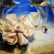 典雅珠宝橱窗装修