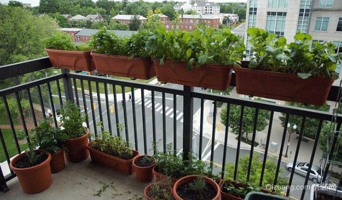 都市生活中的农场:阳台菜园装修效果图