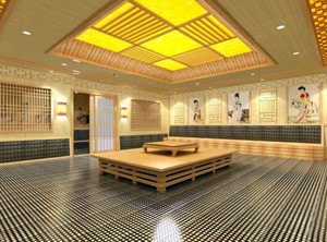 180平米小别墅专用家用汗蒸房装修效果图