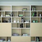 淡雅型书柜效果图