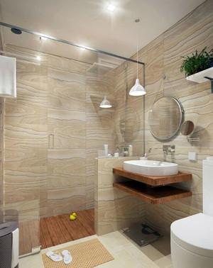 奢华公寓专用带有隔断的卫生间装修效果图