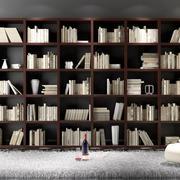 小巧型书柜
