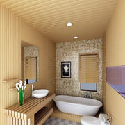 生态木吊顶房屋设计卫生间图
