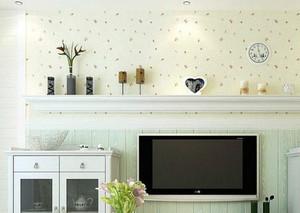 韩式田园风格硅藻泥电视背景墙装修效果图