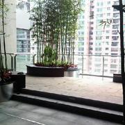 高层简约风格阳台盆栽装修