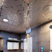 卫生间精致的吊顶装饰