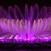 紫色花瓣状喷泉