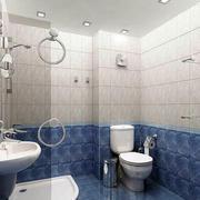 蓝白相间卫生间设计