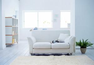 白色简约房屋装修图片