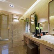 厕所镜子设计图片
