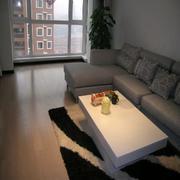 客厅精致地板展示