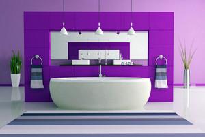 宜人优雅的公寓卫生间设计效果图