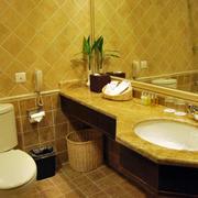 宜家风格厕所设计大全