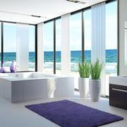 海景房大型浴室浴缸装饰