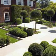 别墅庭院绿意设计