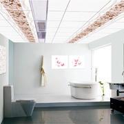 卫生间吊顶花纹欣赏