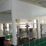 简约风格实验室吊顶效果图