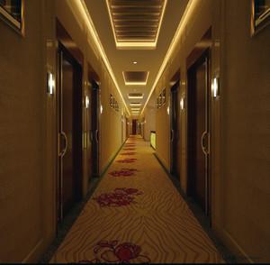 现代精致的宾馆吊顶装修效果图