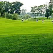自然清爽高尔夫球场