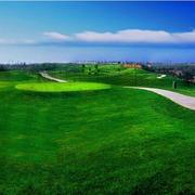 大户型精致高尔夫球场