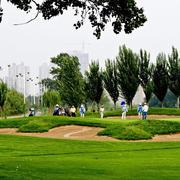 绿色活力高尔夫球场