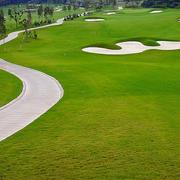 时尚高端的高尔夫球场