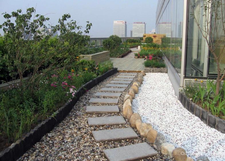 精致公司屋顶花园设计装修效果图