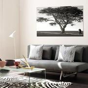 简约时尚小客厅黑白装饰画装修效果图片