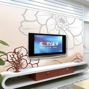 简约精美大户型客厅电视背景墙效果图