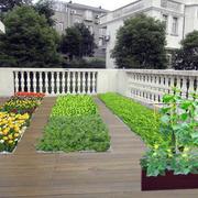 自然风格菜园装修图片