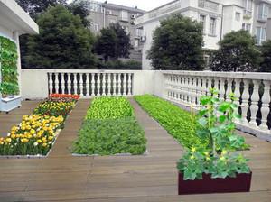 别墅时尚风格阳台菜园装修效果图
