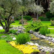 自然唯美人民公园地面设计效果图
