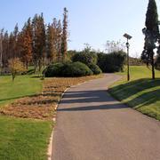 美观简约人民公园绿化设计效果图