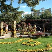 自然清新人民公园装饰设计效果图