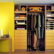 唯美型衣柜效果图片