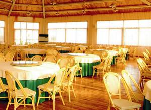 90平米木屋别墅自带原木餐厅装修效果图