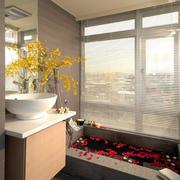 现代浴室百叶窗展示