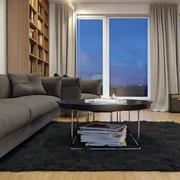浅色色调家庭客厅装饰