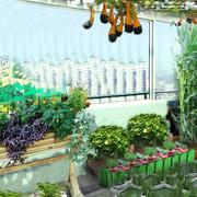 大型小区简约风格高层阳台菜园装修效果图