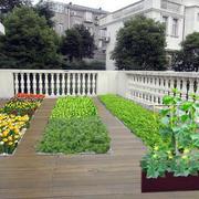 40平米现代简约风格阳台菜园装修效果图