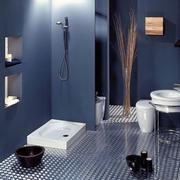 大户型浴室设计图片
