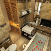 精致60平米公寓小卫生间装修设计效果图