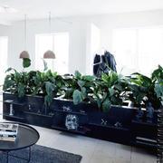 家居客厅植物装饰图