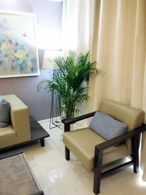澄净鲜明:客厅简约装饰设计效果图