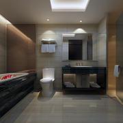 完美的卫生间设计模板