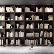 深色调书柜装修大全