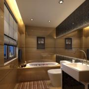 2016精致的大户型欧式洗手间吊顶装修效果图